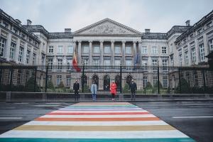 IDAHOT: Inhuldiging zebrapad in regenboogkleuren in politieke hart van België